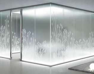 Стёкла и зеркала с рисунками: превосходный способ украсить любой интерьер