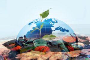 Полезные сведения о паспорте опасных отходов